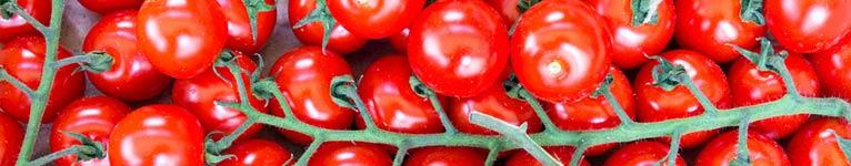 Tomatoey