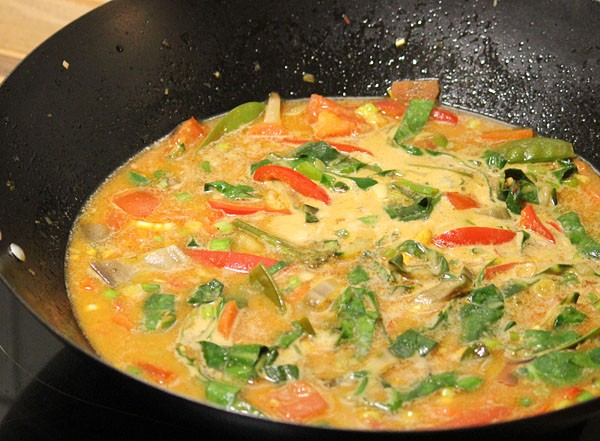 Red Thai Curry with coconut milk