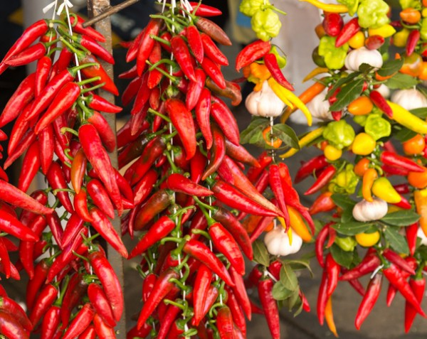 Chili peppers are a real superfood
