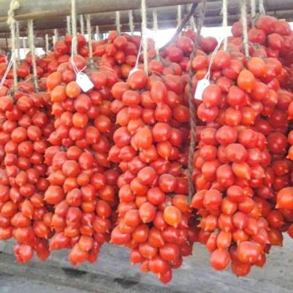 A Grappoli dInverno Tomato Seeds
