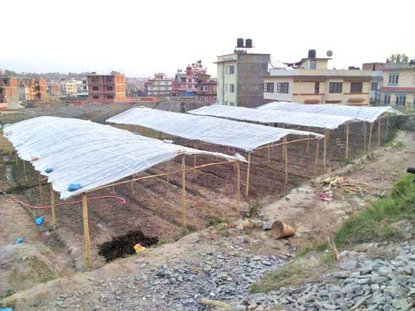 Waisenhaus-Kathmandu-2
