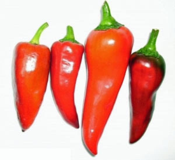 Capia Pepper Chili Seeds