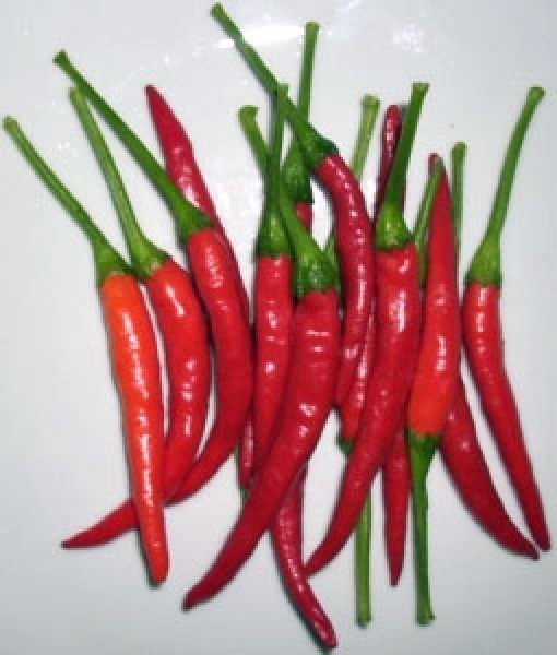 Thai Ladyfinger Chili Seeds