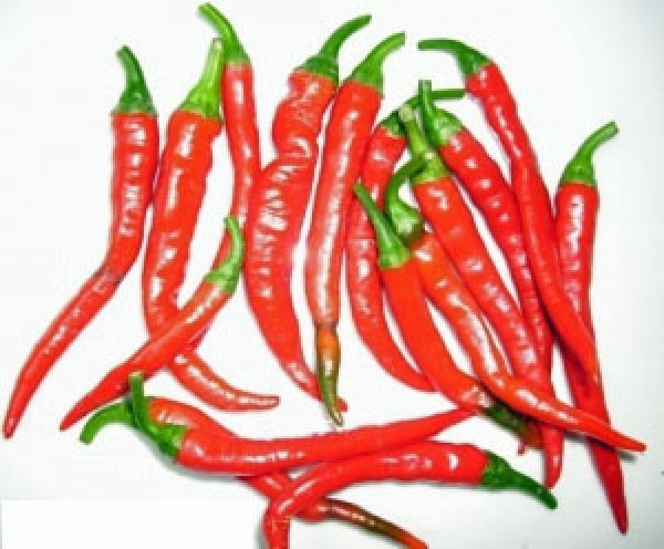 Ring of Fire Chili Seeds