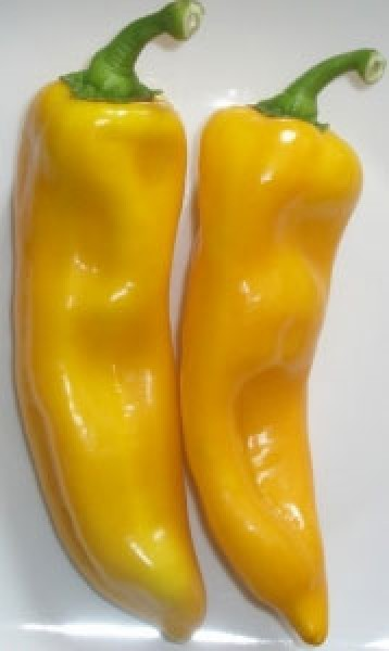 Nocera Giallo Chili Seeds