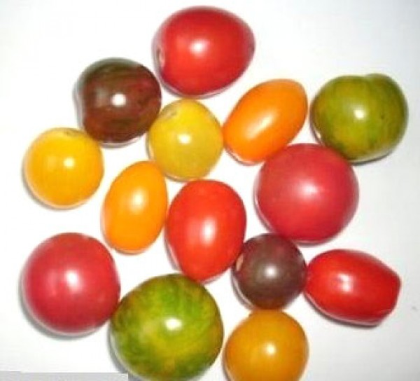 Tomato Seed Mix