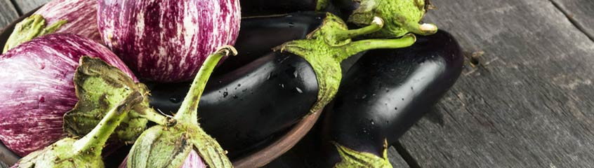 Eggplant & Courgette