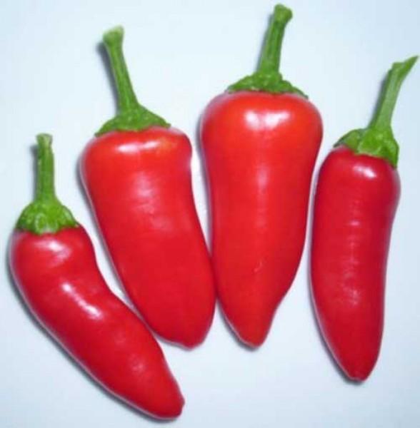 Fresno Chili Seeds