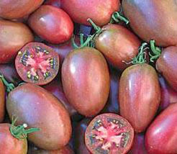 Purple Russian Plum Tomato Seeds